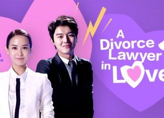 Download Drama Korea Divorce Lawyer in Love