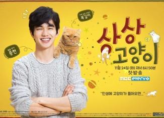 Imaginary Cat (2015) - Download Drama Korea