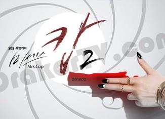 Mrs Cop Season 2 - Sinopsis Drama Korea