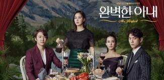 Download Drama Korea Perfect Wife (2017)