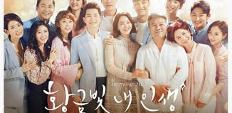 Download Drama Korea My Golden Life (2017)