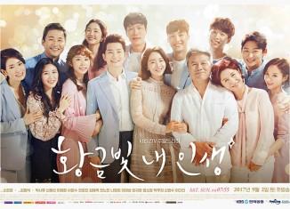 Download Drama Korea My Golden Life (2017)